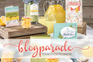 Blogparade-Team-Stempelwiese-juli-2017